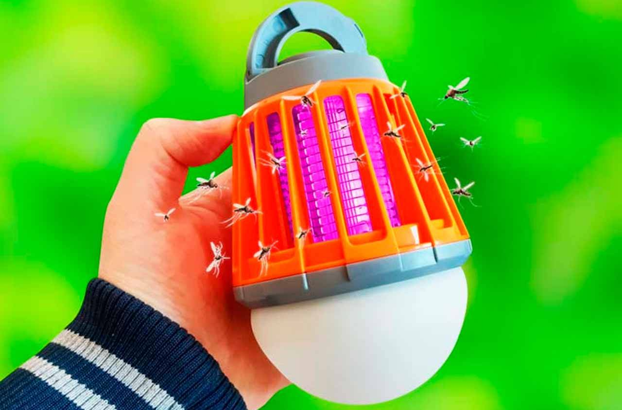 Fuze Bug Reviews – Keep Yourself Safe From Disease-Causing Insects And Bugs
