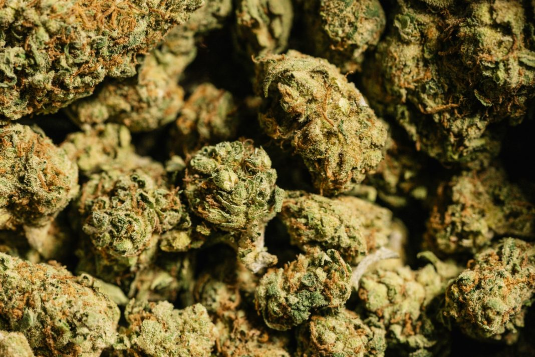 Services Rendered By Toronto Online Dispensary